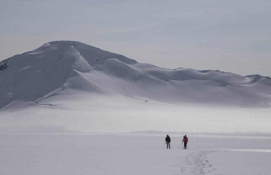 Kluane icefield 201600026